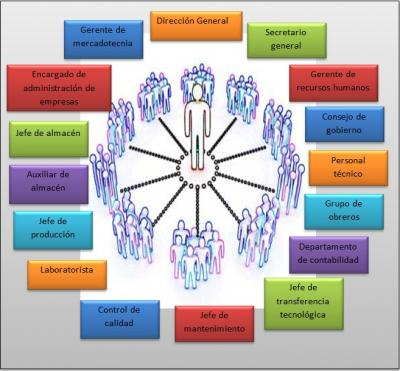 Establecer Un Organigrama Para Una Empresa En Base A